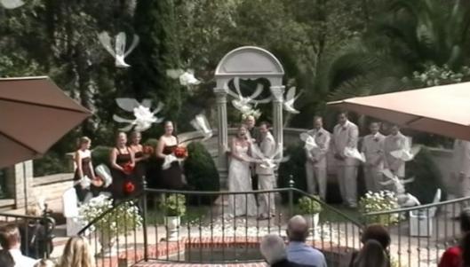 WeddingPageLargeThumbnail