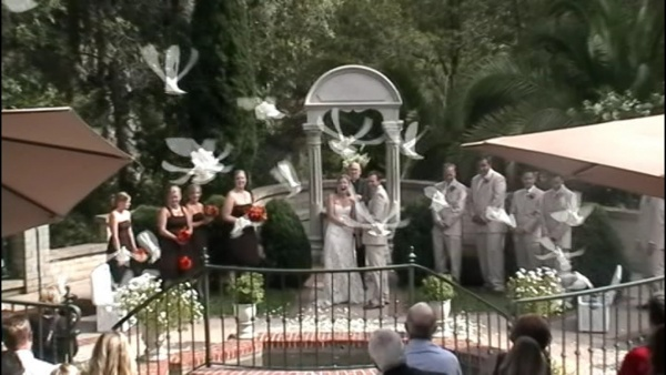 dove release at wedding ceremony